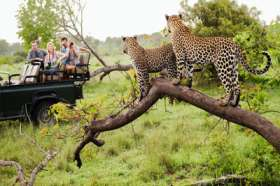 KRUGER NATIONAL PARK SAFARI COST